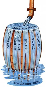 carrying.capacity.of.earth